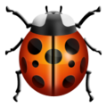 Ladybird Emoji