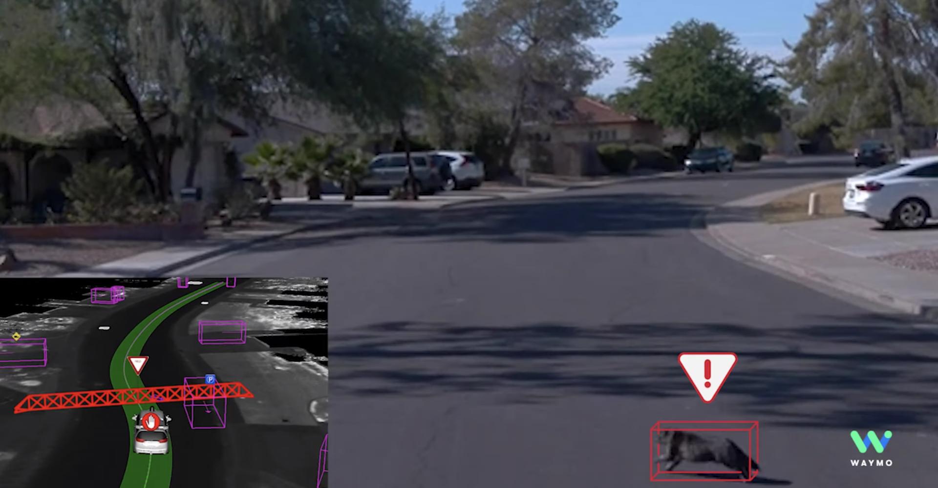 Waymo shows how its autonomous car dodged a cat